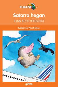 satorra hegan - Juan Kruz Igerabide Sarasola / Patxi Gallego (il. )