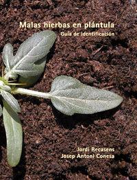 malas hierbas en plantula - guia de identificacion - Jordi Recasens I Guinjuan / J. A. Conesa I Mor