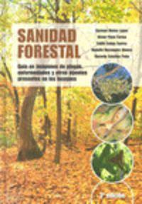 Sanidad Forestal - C.  Muñoz Lopez  /  V.  Perez Fortea