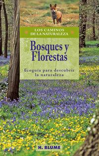 Bosques Y Florestas - Ecoguia Para Descubrir La Naturaleza - Vv. Aa.
