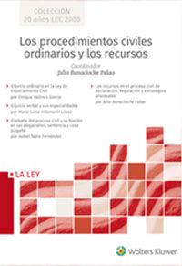 PROCEDIMIENTOS CIVILES ORDINARIOS Y LOS RECURSOS, LOS