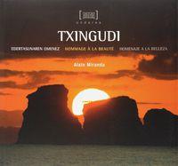 Txingudi - Edertasunaren Omenez = Hommage A La Beaute = Homenaje A La Belleza - Alain Miranda