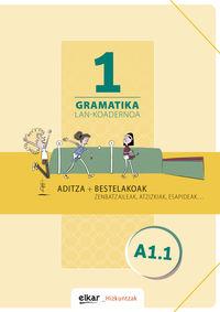 GRAMATIKA LAN-KOADERNOA 1 (A1.1) ADITZA + BESTELAKOAK