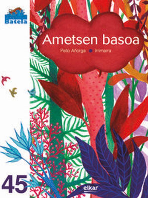 ametsen basoa - PELLO AÑORGA LOPEZ / Irrimarra (il. )