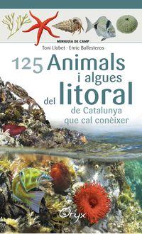 125 ANIMALS I ALGUES DEL LITORAL DE CATALUNYA