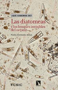 Las diatomeas y los bosques invisibles del oceano - Pedro Cermeño Ainsa