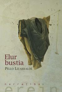 Elur Bustia - Pello Lizarralde