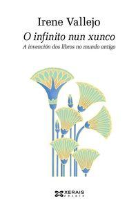 INFINITO NUN XUNCO, O - A INVENCION DOS LIBROS NO MUNDO ANTIGO