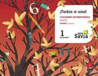 EP 1 - GLOBALIZADO 1 TRIM (PAUTA) - MAS SAVIA