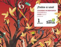 EP 1 - GLOBALIZADO TRIM 1 (AND) (CUADRICULA) - MAS SAVIA