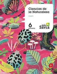 EP 6 - NATURALES (ARA) - MAS SAVIA