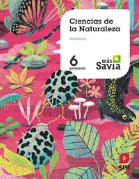 EP 6 - NATURALES (AND) - MAS SAVIA