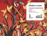EP 1 - GLOBALIZADO TRIM 1 (MAD) - PAUTA - MAS SAVIA