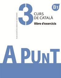 A PUNT - CURS DE CATALA - EXERCICES 3