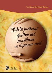 Tutela Judicial Efectiva Del Nasciturus En El Proceso Civil - Tomas Javier Aliste Santos
