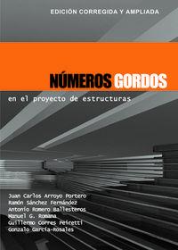 NUMEROS GORDOS EN EL PROYECTO DE ESTRUCTURAS (2ª ED)