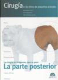 La  parte posterior  -  Cirugia En La Clinica De Pequeños Animales - Jose  Rodriguez Gomez  /  Jaime   Graus Morales  /  Maria Jose  Martinez Sañudo