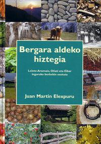 BERGARA ALDEKO HIZTEGIA