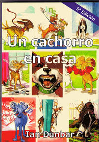 CACHORRO EN CASA, UN