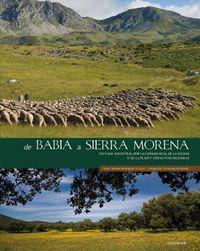 DE BABIA A SIERRA MORENA