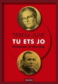 Tu Ets Jo - Flaixos Per Al Meu Blog - Teresa Juve