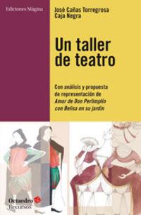 Taller De Teatro, Un - Con Analisis Y Propuesta De Presentacion De Amor De Don Perlimplin Con Belisa En Su Jardin - Jose Cañas Torregrosa