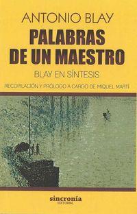 PALABRAS DE UN MAESTRO - BLAY EN SINTESIS