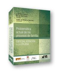 Problematica Actual De Los Procesos De Familia - Especial Atencion A La Prueba - Carlos De Miranda Vazquez (coord. )