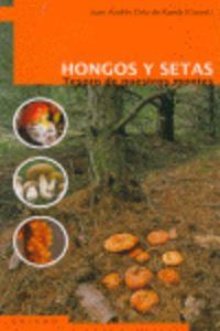 HONGOS Y SETAS - TESORO SE NUESTROS MONTES