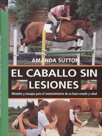 El caballo sin lesiones - Amanda Sutton