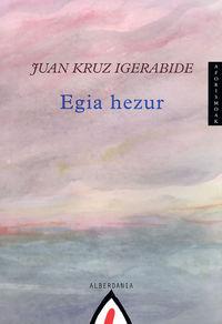 egia hezur - Juan Kruz Igerabide