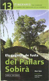 gegants de fusta del pallars sobira - Marc Sans / Jordi Tutusaus I Graus