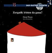 zergatik iristen da gaua? - Oscar Picazo / Idoia Beratarbide (il. )