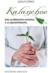 Kalanchoe - Adolfo Perez