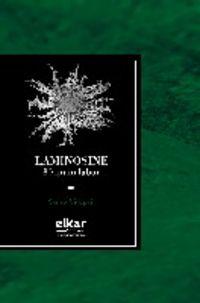 Laminosine - 80 Ipuin Labur - Xarles Videgain
