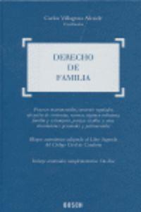Derecho De Familia - C.  Villagrasa (coord. )
