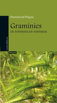 Graminies - Montserrat Mitjans