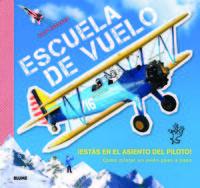 Escuela De Vuelo - ¡estas En El Asiento Del Piloto! - Como Pilotar Un Avion Paso A Paso - Nick Barnard