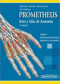 Compendio De Anatomia / Atlas De Anatomia - Benninghoff  /  Gilroy