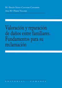 Valoracion Y Reparacion De Daños Entre Familiares - M. B. Sainz-cantero Caparros
