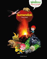 sumendiak - Pascale Hedelin / Julie Mercier (il. ) / Sandrine Thommen (il. )