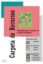 Mis Primeras Semanas En El Aula De Enlace - Irene Lema Martínez