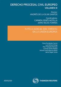 Derecho Civil Europeo Iii - Mª Carmen  Senes Motilla  /  Andres   Oliva Santos  /  Jaime  Vegas Torres