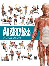 ANATOMIA & MUSCULACION - GUIA VISUAL COMPLETA (ED COLOR)