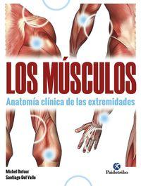 MUSCULOS, LOS - ANATOMIA CLINICA DE LAS EXTREMIDADES