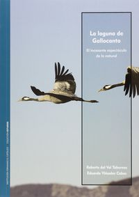 La  laguna de gallocanta  -  El Incesante Espectaculo De Lo Natural - Roberto  Val Tabernas Del  /  Eduardo  Viñuales Cobos