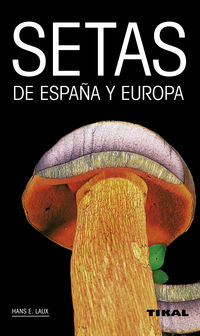 SETAS DE EUROPA Y ESPAÑA
