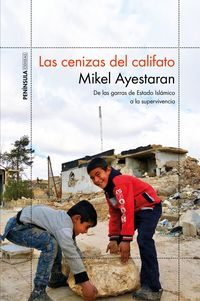 Las cenizas del califato - Mikel Ayestaran